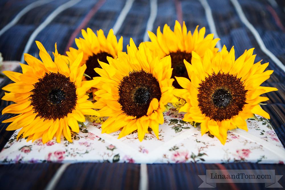Sunflower buttonholes by Your London Florist