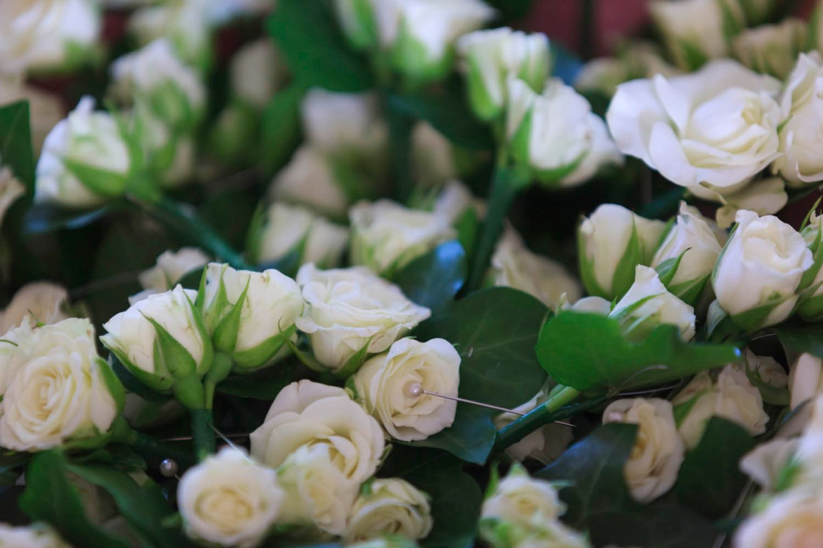 white spray rose buttonhole