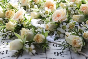 spray rose buttonholes by Your London Florist